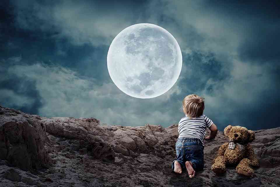 """Critical Analysis of """"Full Moon and Little Frieda"""" 