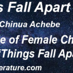 "Role of Female Characters in ""Things Fall Apart"""